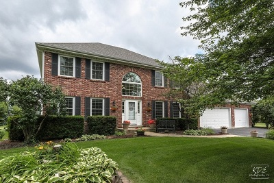 Naperville Single Family Home For Sale: 23921 Deer Chase Lane