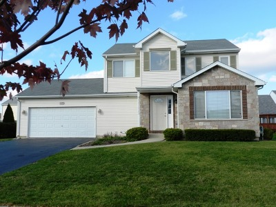 Bolingbrook Single Family Home For Sale: 1450 Hawk Drive