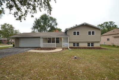 Glen Ellyn Single Family Home For Sale: 2n653 Amy Avenue