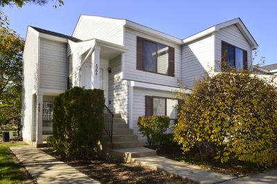 Schaumburg Condo/Townhouse For Sale: 964 Brunswick Circle