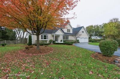 Libertyville Single Family Home For Sale: 17391 Fairhill Road