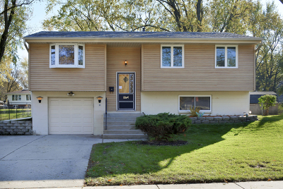 Schaumburg Single Family Home For Sale: 1405 Cabot Lane