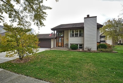 Homer Glen Single Family Home For Sale: 13849 West Stoneoak Way