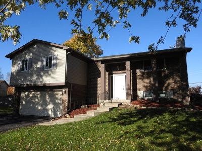 Bolingbrook Single Family Home For Sale: 301 Drake Avenue