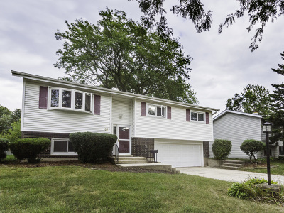 Lombard Single Family Home Contingent: 85 South Lewis Avenue