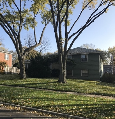 Naperville Single Family Home For Sale: 664 North Eagle Street
