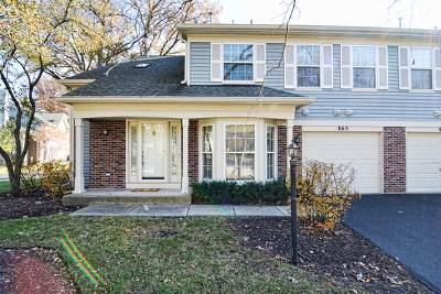 Elgin Condo/Townhouse For Sale: 865 North Shady Oaks Drive