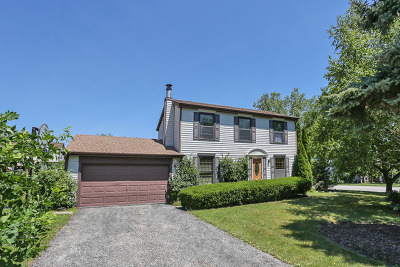Schaumburg Single Family Home For Sale: 132 Dana Court