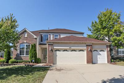 Streamwood Single Family Home For Sale: 124 Buckskin Lane