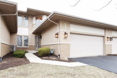 Frankfort Condo/Townhouse Contingent: 20441 Falling Water Circle