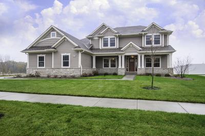Lemont Single Family Home For Sale: 12895 Rosa Lane