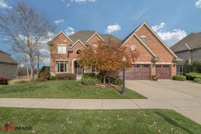 Lemont Single Family Home For Sale: 13543 Cambridge Drive