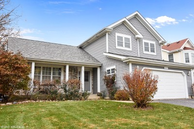 Lake Zurich Single Family Home For Sale: 635 Red Bridge Road