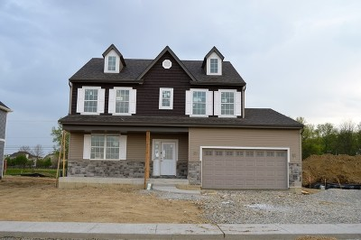 Plainfield Single Family Home New: Lot 117 Carmel Boulevard