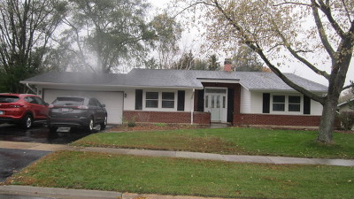 Woodridge Single Family Home For Sale: 6420 Clark Drive