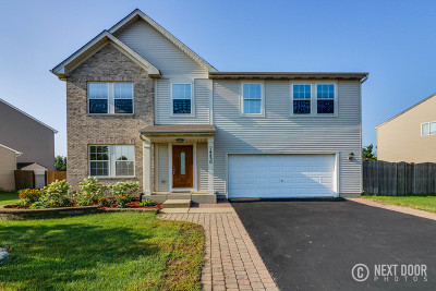 Plainfield Single Family Home For Sale: 14430 Independence Drive