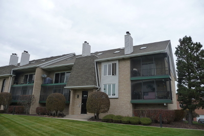 Orland Park Condo/Townhouse For Sale: 15714 South Sunset Ridge Court #2N