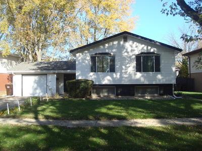 Homewood Single Family Home For Sale: 1256 Jamie Lane