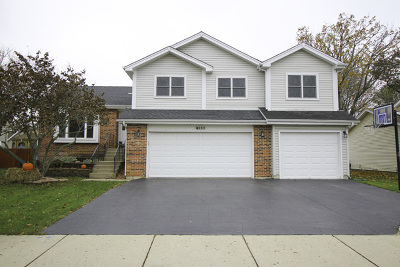 Lake Zurich Single Family Home For Sale: 283 Denberry Drive