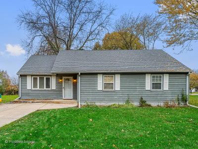 Lisle Single Family Home For Sale: 5136 Kingston Avenue