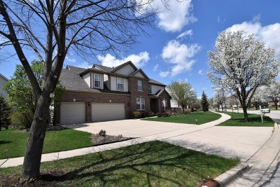 Streamwood Single Family Home For Sale: 133 Rosewood Drive