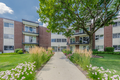 Downers Grove Condo/Townhouse For Sale: 2800 Maple Avenue #2B