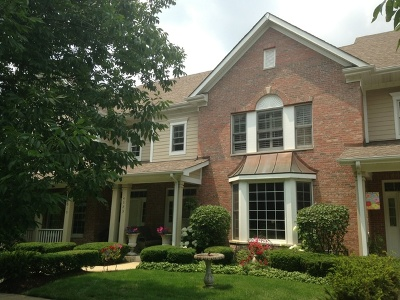 St. Charles Condo/Townhouse For Sale: 4323 Canterbury Court