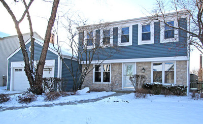 Schaumburg Single Family Home For Sale: 464 Linsey Avenue