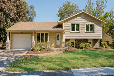 Glendale Heights Single Family Home Contingent: 1691 Jeffrey Avenue
