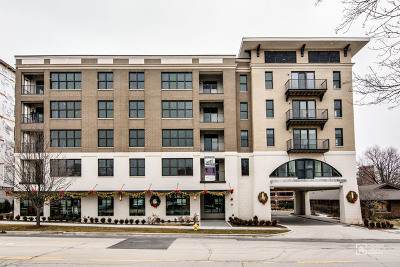 Downers Grove Condo/Townhouse For Sale: 940 Maple Avenue #505