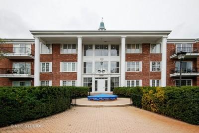 Flossmoor  Condo/Townhouse For Sale: 3439 Vollmer Road #201