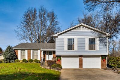 Crystal Lake Single Family Home New: 542 Monterey Drive
