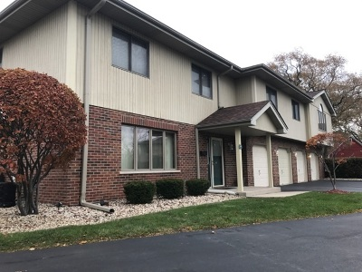 Palos Heights, Palos Hills Condo/Townhouse New: 9029 West 111th Street #2A