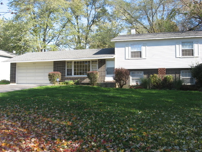 Downers Grove Single Family Home For Sale: 6067 Chase Avenue