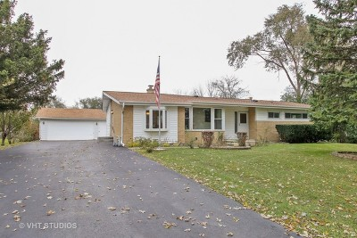 Mount Prospect Single Family Home For Sale: 1003 North Meadow Lane