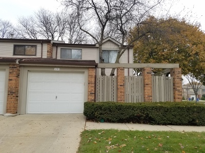 Mount Prospect Condo/Townhouse For Sale: 210 West Hanover Place