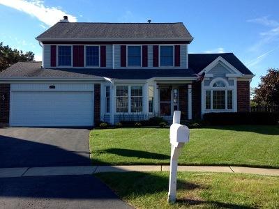 Schaumburg Single Family Home New: 2309 Aimee Lane