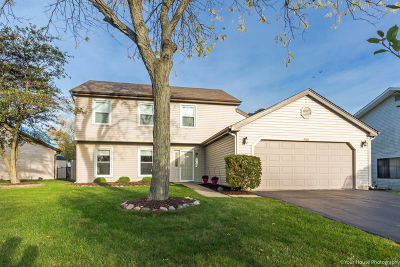 Bartlett IL Single Family Home Contingent: $279,900