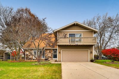 Crystal Lake Single Family Home For Sale: 1030 Colony Drive