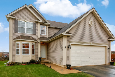 Streamwood Single Family Home For Sale: 25 Trail Ridge Court