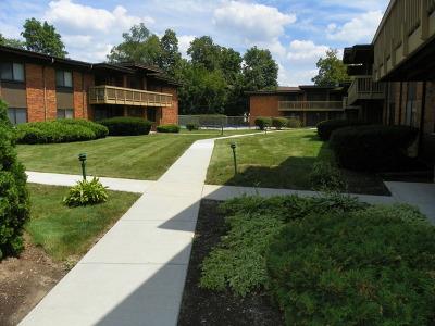 Glen Ellyn Condo/Townhouse For Sale: 481 Duane Terrace #A-1