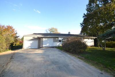 Glen Ellyn Single Family Home For Sale: 915 Dawn Avenue