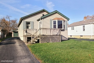 Steger IL Single Family Home New: $33,900