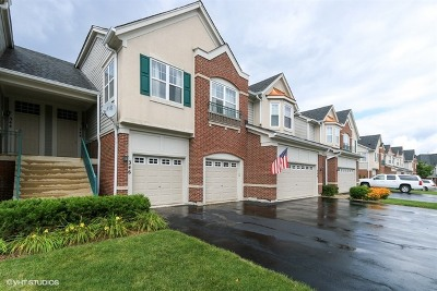 Vernon Hills Condo/Townhouse New: 346 East Pine Lake Circle