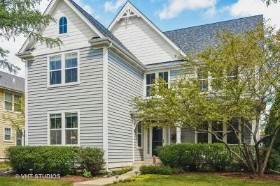 Vernon Hills Single Family Home New: 390 Marseilles Street