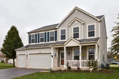 Joliet Single Family Home For Sale: 2812 Misty Brook Lane