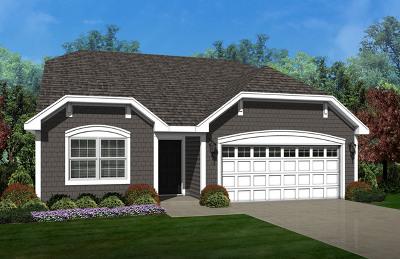 Pingree Grove Single Family Home For Sale: 1100 Americana Avenue