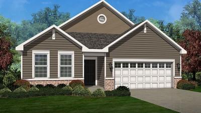 Pingree Grove Single Family Home For Sale: 1060 Americana Avenue