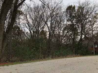 Carpentersville Residential Lots & Land For Sale: Lot 9 Castlewood Drive