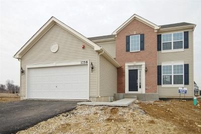 Hoffman Estates Single Family Home New: 5801 Fairview Lane